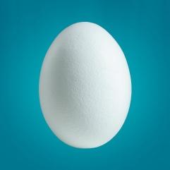Lindo Huevo Tuitero